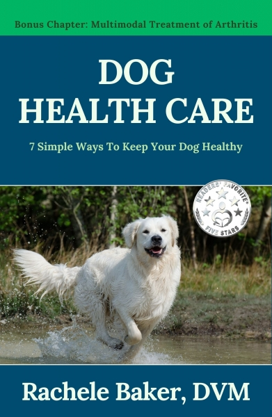 Dog Health Care: 7 Simple Ways To Keep Your Dog Healthy