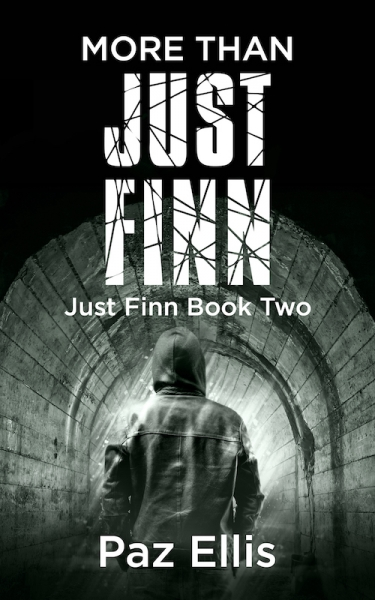 More Than Just Finn ~ Just Finn Book Two