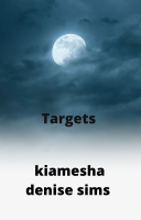 Targets: Book 1 of The Blinded BullsEye Series